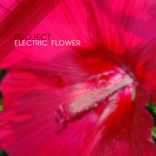 [EP] YK – Project Electric Flower