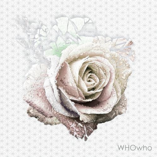 WHOwho – Oh Yeah
