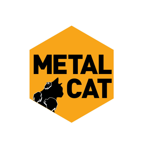 [Single] Metal Cat – Won`t You Cry