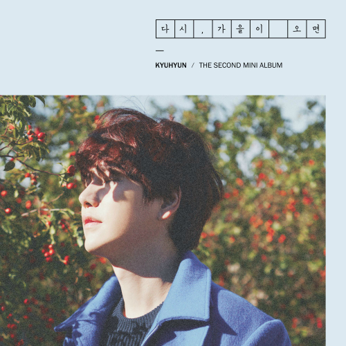KYUHYUN – Fall, Once Again – The 2nd Mini Album (FLAC + ITUNES PLUS AAC M4A)