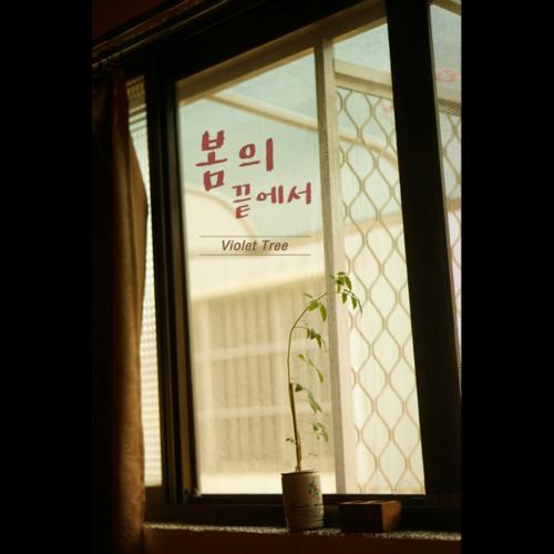 [Single] Violet Tree – 봄의 끝에서
