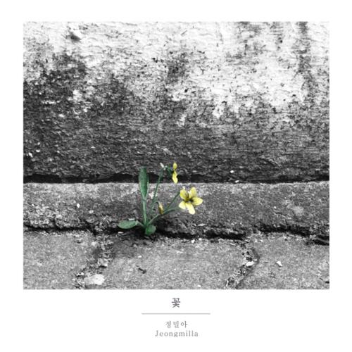 [Single] Jeongmilla – 꽃
