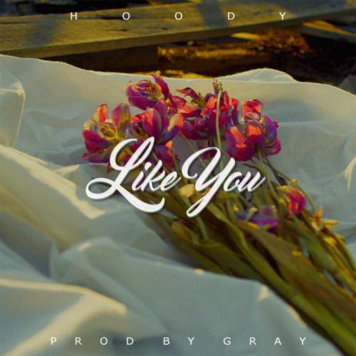 Hoody – Like You – Single (ITUNES PLUS AAC M4A)