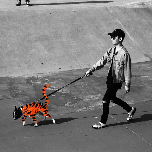 Boy Wonder – 호랑이 (Feat. Ja Mezz) – Single
