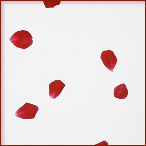 [Single] Remains – 마지막 춤은 그대와 함께